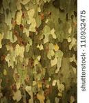 Camouflage écorce arbre-min (1)