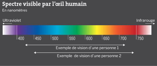 spectre-lumineux-min