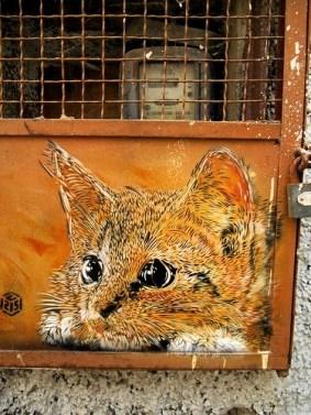 street-art-curiouscat-serveimage-min