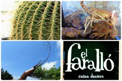 Detalles que se encuentra uno en El Faralló (fotos: Cuchillo)