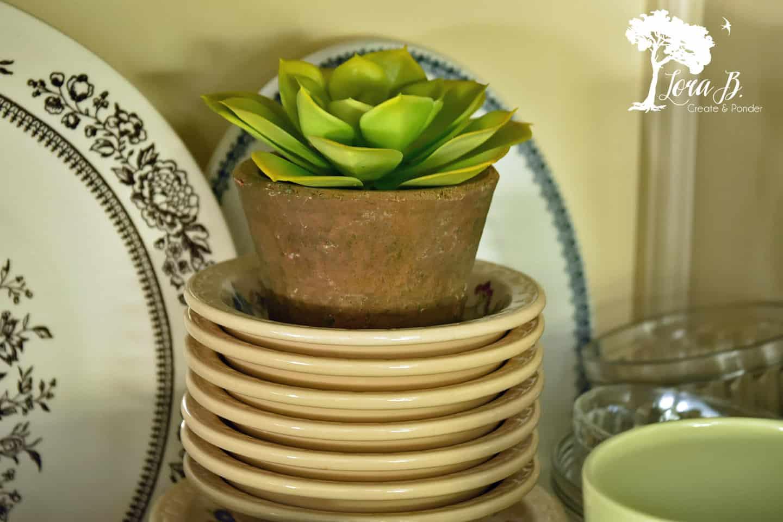 Mini succulent.