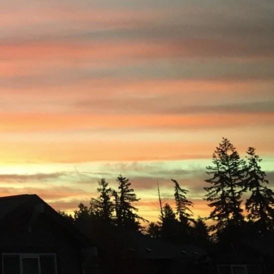 striated-sunrise
