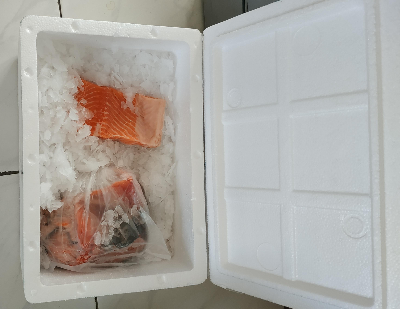 Lorberboim curding Salmon. Lorberboim.club.