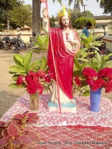 christ-the-king-2016-cathedral-bhagalpur