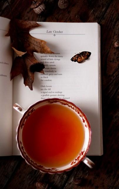autumn-inspiration-reading