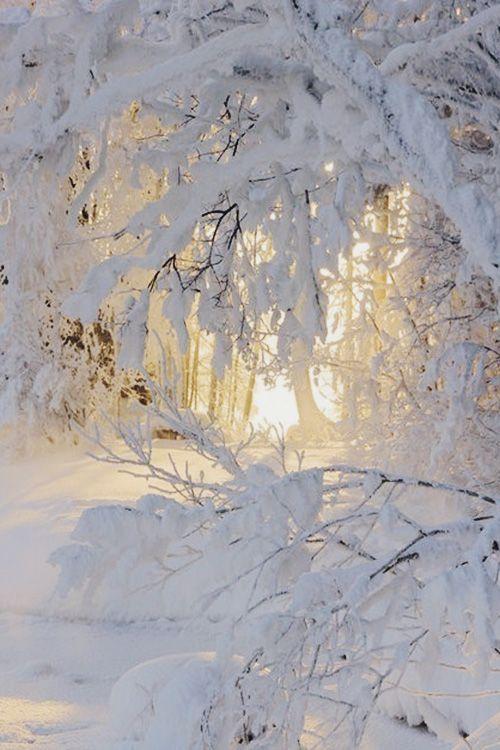inspiratie-de-iarna-2