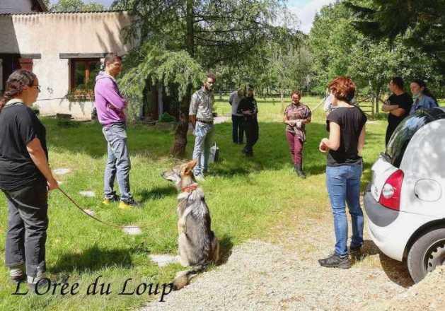 clt-seminaire-l-oree-du-loup