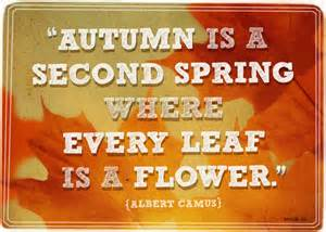 Fall Forward into your life!