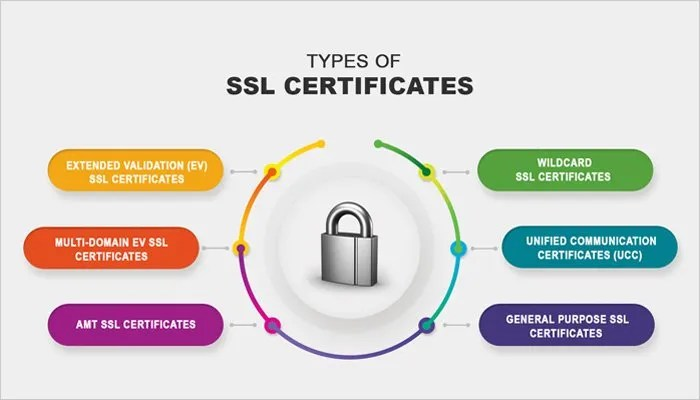 types of ssl certificates
