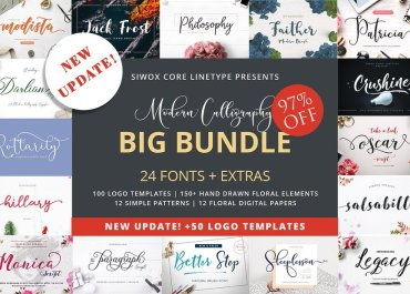 Download Calligraphy Font Bundle - 97% OFF Regular Price - Premium Downloads Lorelei Web Design