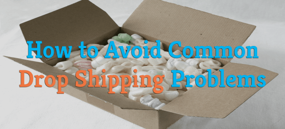 How To Protect Yourself From Logistic Problems With Your Dropshipping Company - Blog Lorelei Web Design