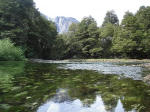 lake around bariloche, argentina