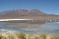 Laguna Bolivia Altiplano