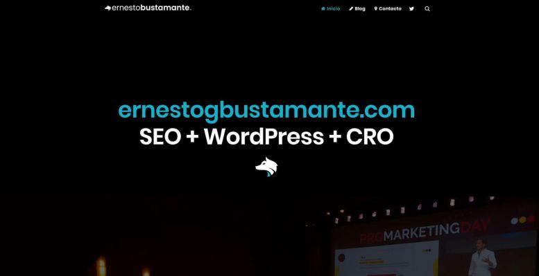 Ernesto Bustamante.JPG 1 - Las webs de los 20 especialistas en posicionamiento SEO más importantes de España 🏆