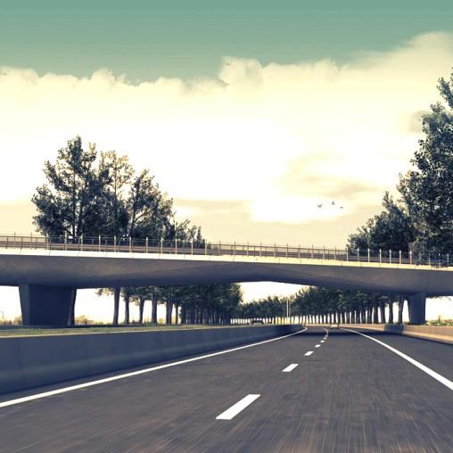 A11 Highway - Bridge 104 (15)