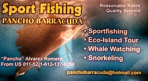 pancho-barracuda-front-600