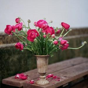 Floristería madrid chambera Loreto Aycuens estudio floral