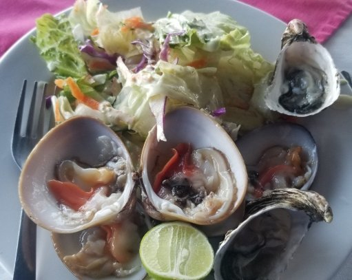 salad-oysters