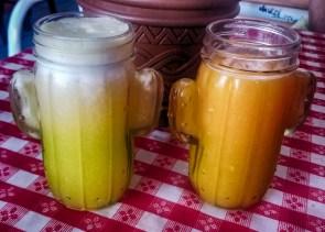 waicura-juice