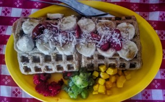 waicura-waffles