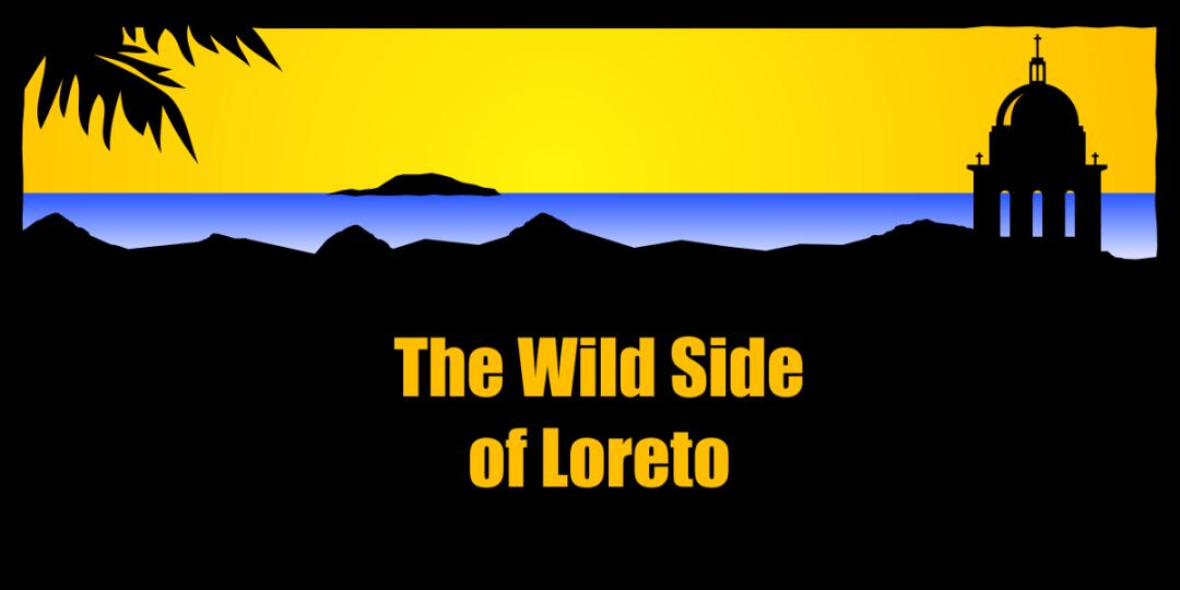 Wild Side of Loreto Mexico