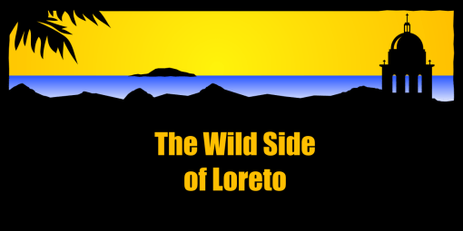 The Wild Side of Loreto