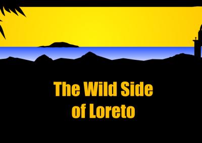 The Wild Side of Loreto