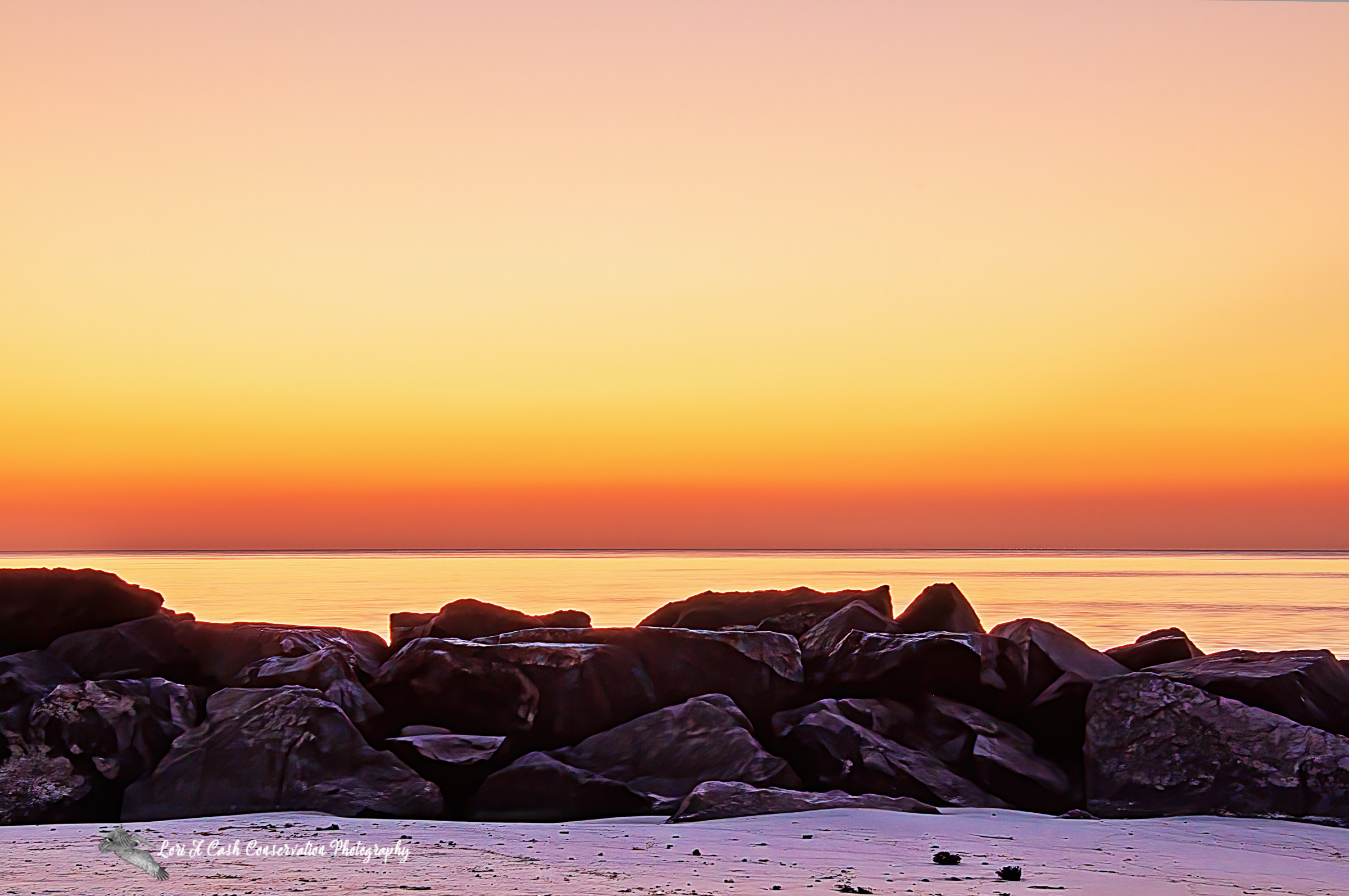 Beautiful, orange color of the sky from the sunrise over the rock jetty at Buckroe Beach in Hampton, Virginia.
