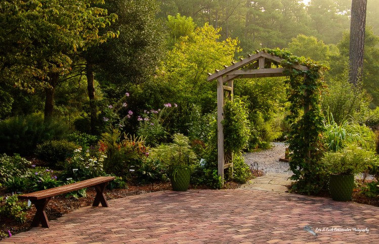 A late summer morning on the patio area at the Williamsburg Botanical Garden located inside the Freedom Park in Williamsburg, Virginia.