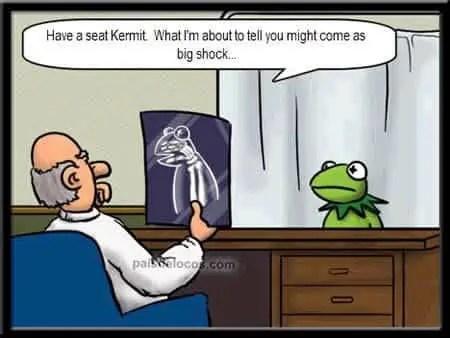 kermit x-ray