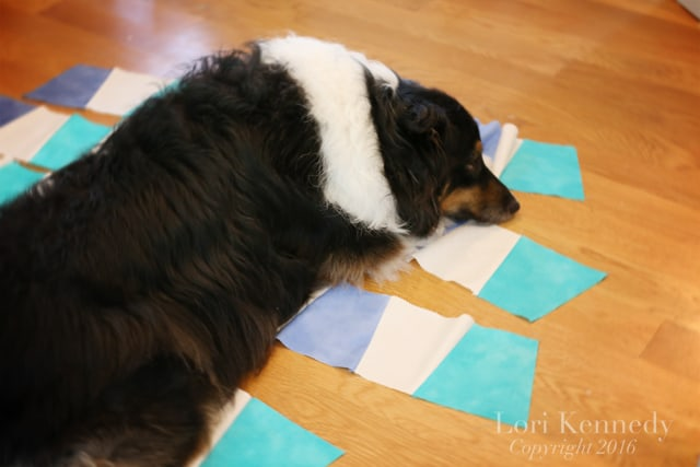 Dogs and Quilts