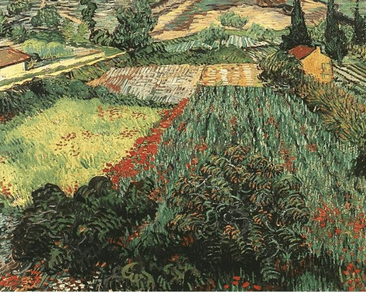 Wheat Field with Poppies, Van Gogh