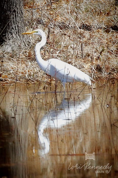 Great White Egret, Lori Kennedy