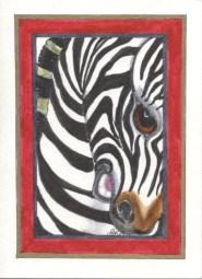 Zebra - TDCB14 $4