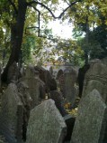 Tombstones in the old Jewish cemetery