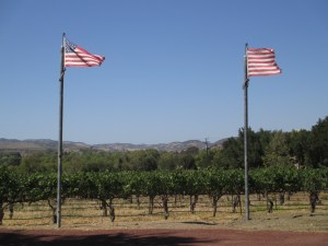"Vineyards at Mosby.  The flag on the right is a pre-revolution ""Sons of Liberty"" flag."