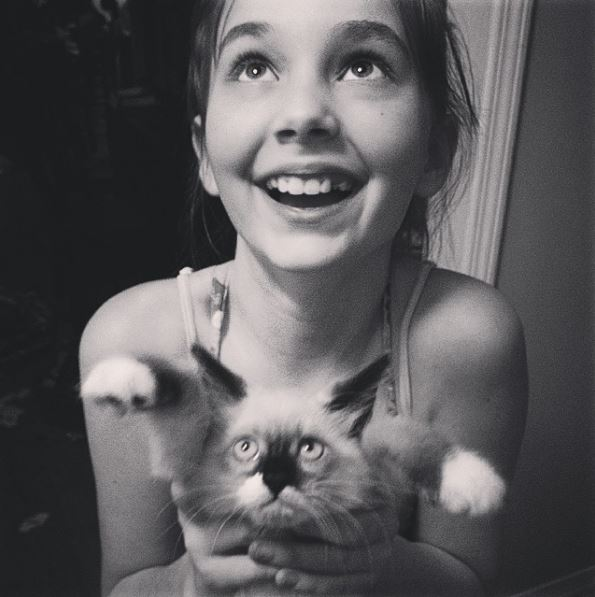 A Grumpy Kitten