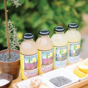 loris-original-lemonade-where-to-find