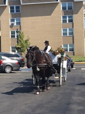 horse-and-buggy-cape-may