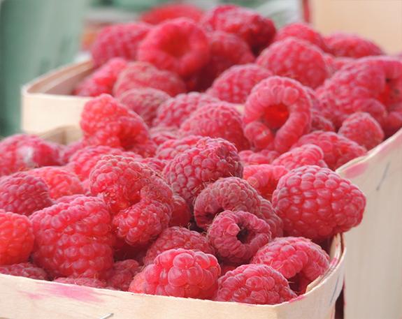 berries-2