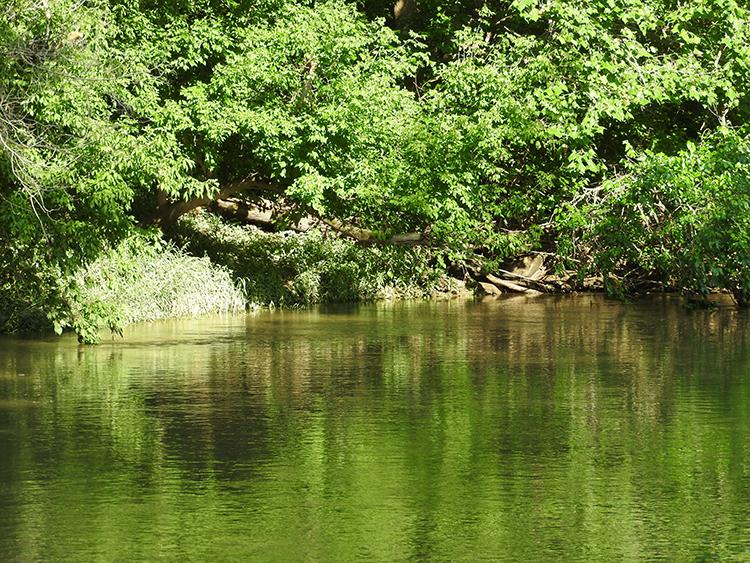 zionsville creek