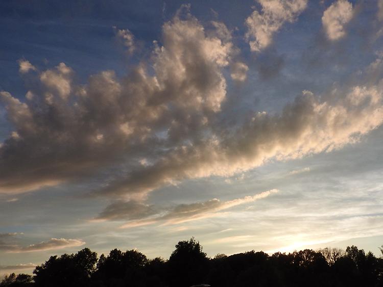 sunset in th epark