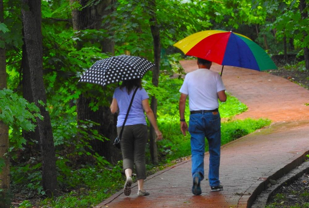 In the Rain at IU