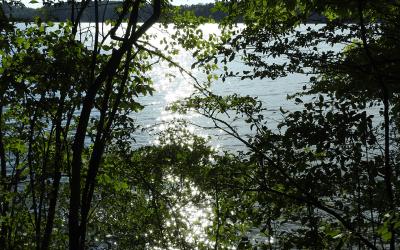 Late Summer at the Lake