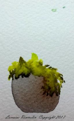 Edges-Flowering Pots6
