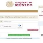 LAS VACUNAS EN MEXICO, SE DARAN EN EPOCA ELECTORAL