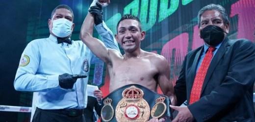 Albañil y campeón de la Asociación Mundial de Boxeo