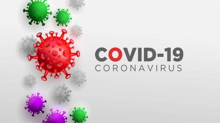 Vacuna contra COVID-19 es eficaz en un 90%  anuncia Pfizer