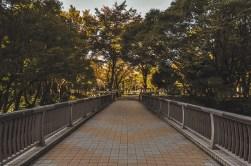Central Park-Tokyo