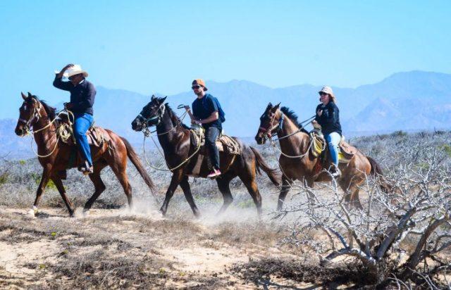 G-Force Horseback Riding (3 of 3)